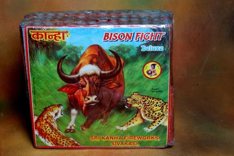 Patla 28 Bison Fight Kahna