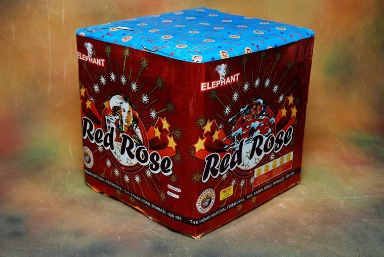 FSHOT 25 Big red Rose Indian