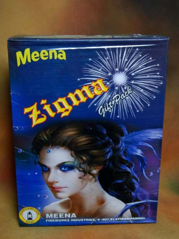 Gift Zigma Meena