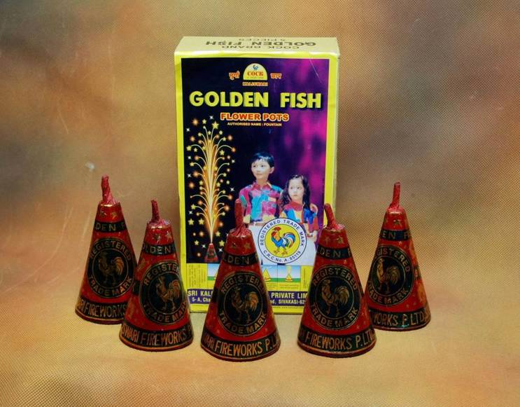 FP Fncy Golden Fish Flower Kaliswari 5 Pc