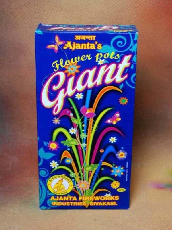 FP Giant Dream Flower Ajanta