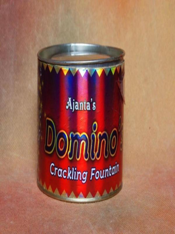 FNCY Dominos Ajanta