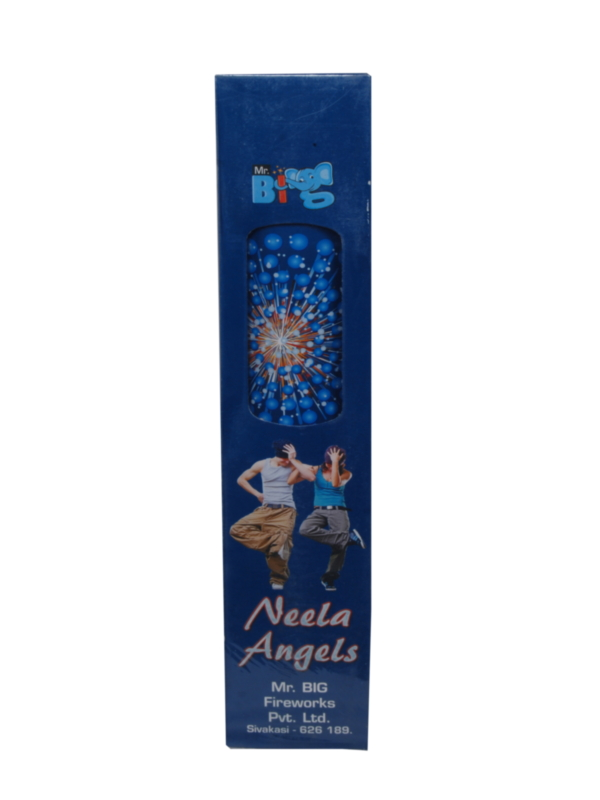 FNCY 3 Neela Angels 1 Pc Indian